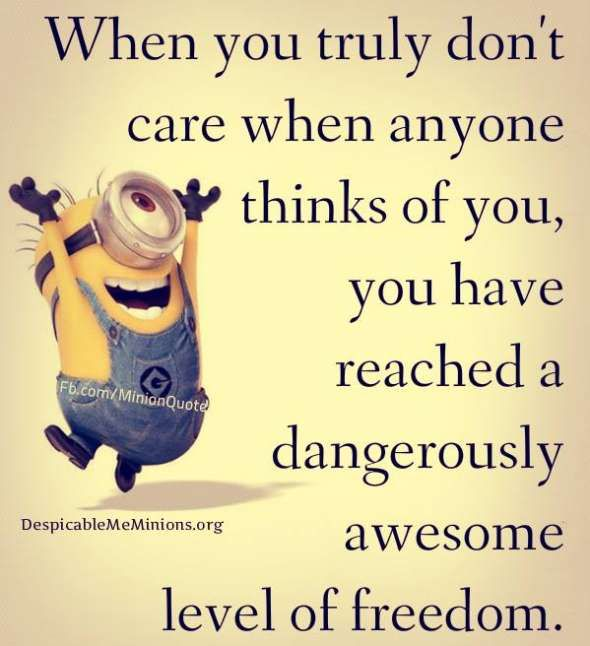 When You Truly Dont Care I Love Minions Minions Quotes Funny