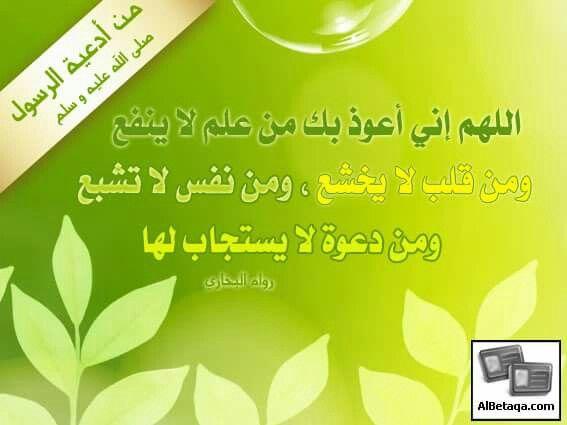 Allah Mohammad Makkah Quran Hadith Bukhari Muslim Deen Biology Muslimah Dua Islam Hijabi Science Technology Medina Kuran Ayet Namaz Kalima Subahnall Quotes Ale
