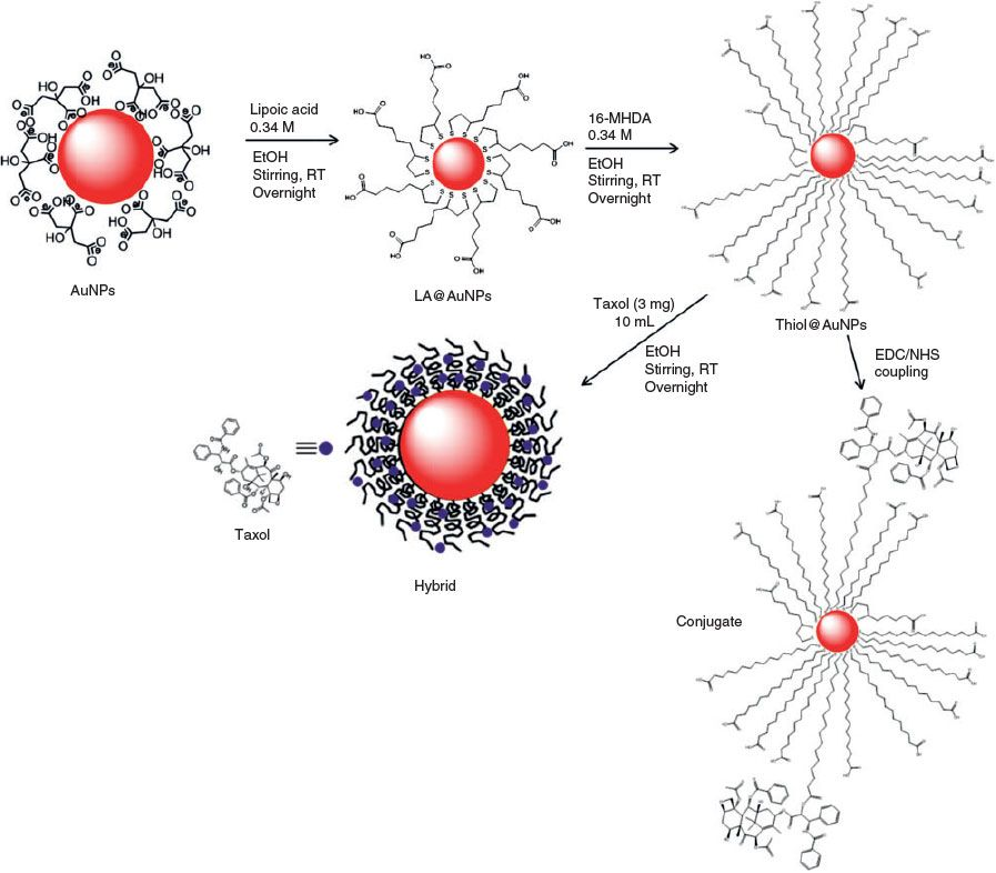 Click to zoom | Cancer cell, Cancer, Journal of chemistry