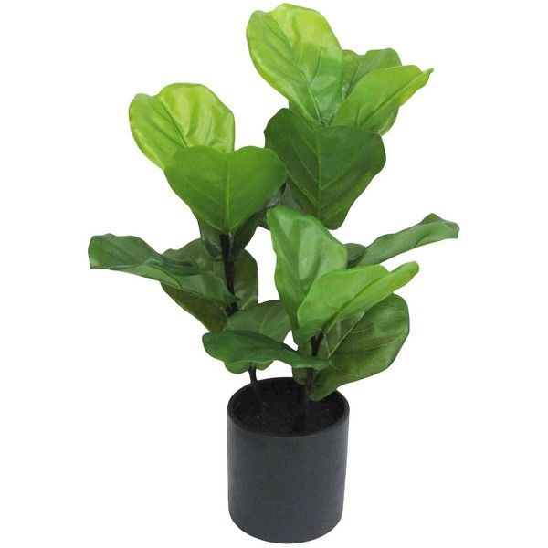 Artificial Fiddle Leaf Fig Plant in Black Pot (360 CNY) ❤ liked on