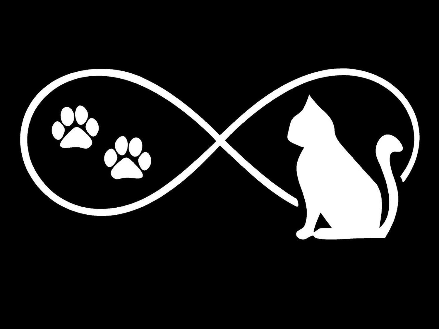 Cat Decals Paw Print Infinity Feline Truck Car Window Vinyl - Cat custom vinyl decals for car windows