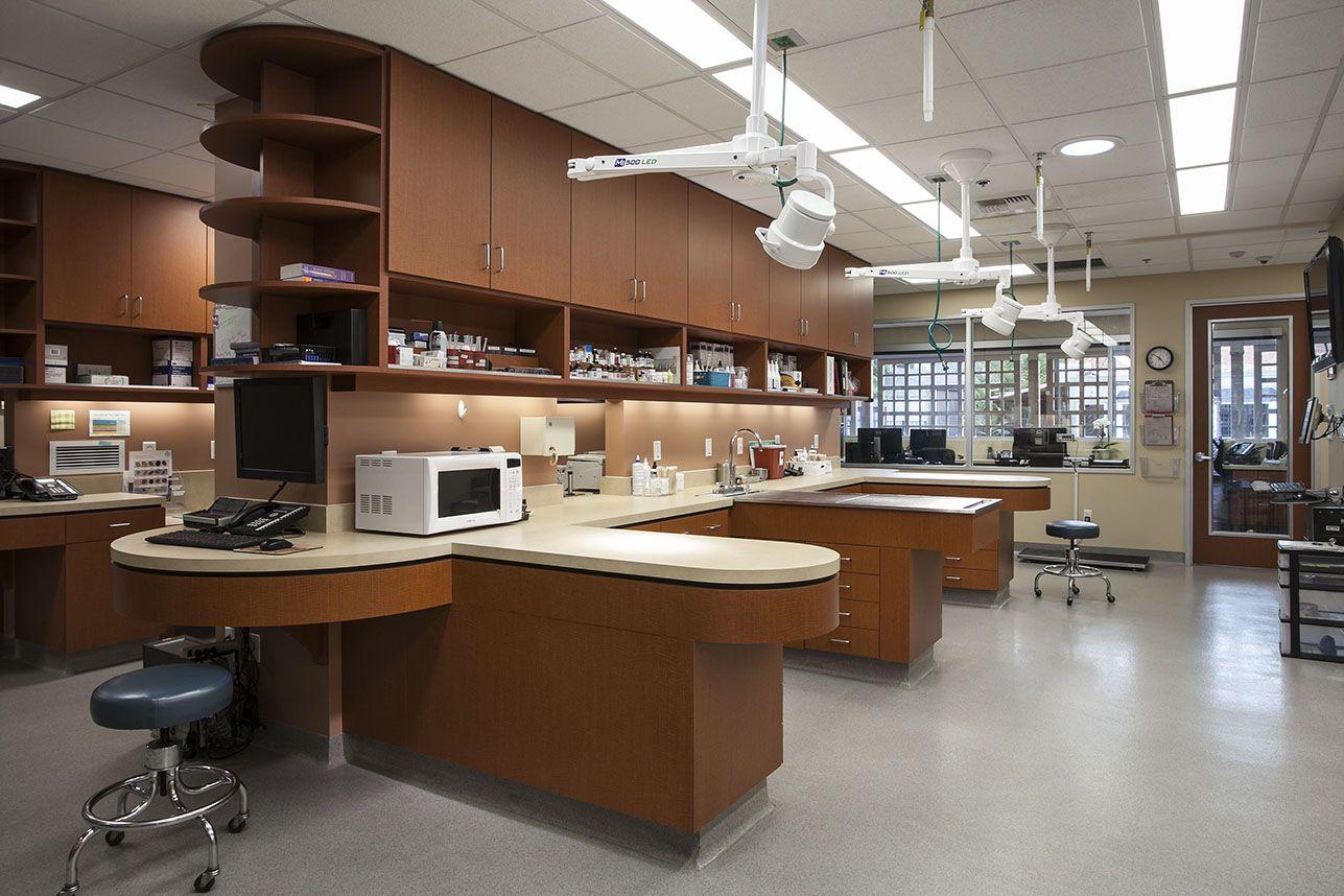 Veterinary Architecture Veterinary Hospital Design