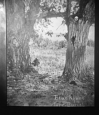 About Native Americans: Blackfeet Indian Tree-Burials