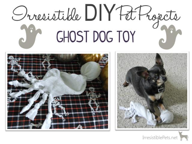 HowlOWeen {DIY Ghost Dog Toy Dog toys, Ghost dog, Diy