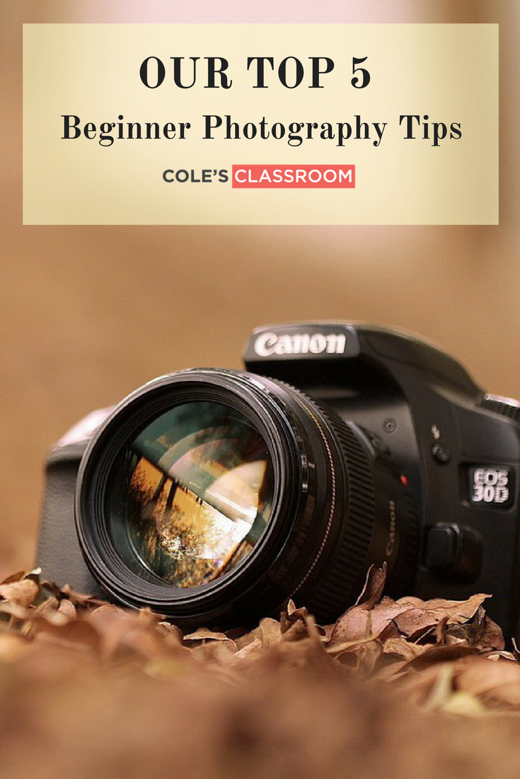 How to learn to photograph professionally with the help of any camera