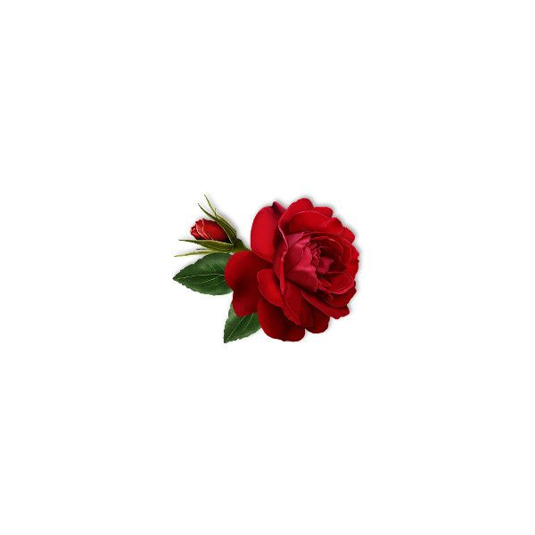 Картинки корзины роз из аватарии