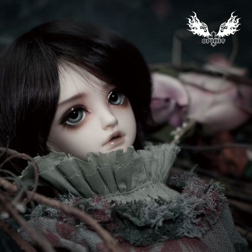 DOLKSTATION - An integrated shopping mall of Doll goods