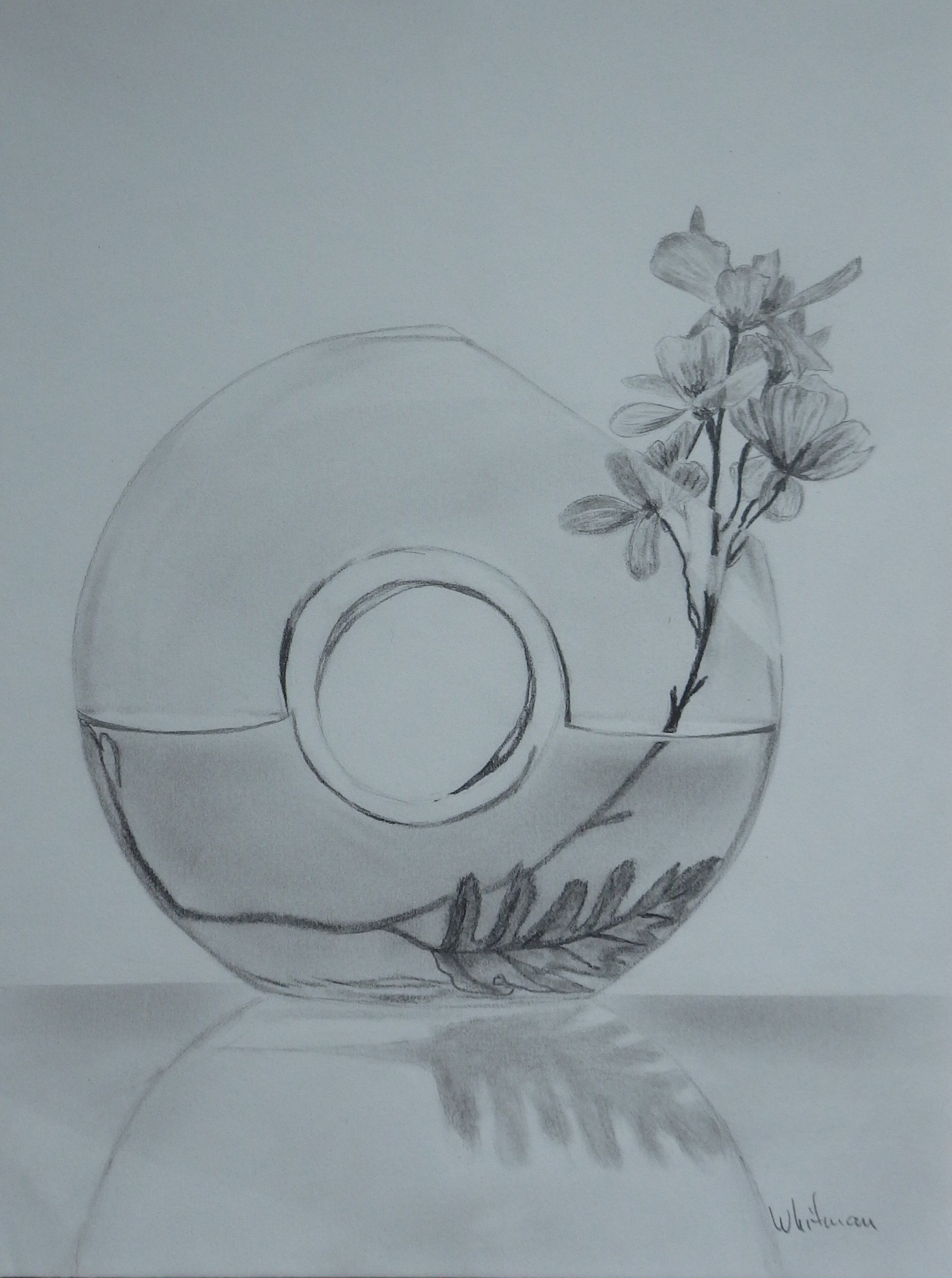 Glass vase with flowers still life sketch original art graphite glass vase with flowers still life sketch original art graphite pencil drawing by reviewsmspy