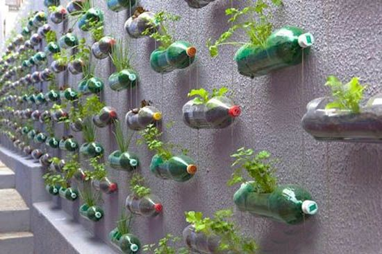 green-wall-garden-recycling-plastic-bottles