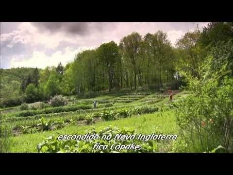 O desafio de Rudolf Steiner - parte 1 - YouTube