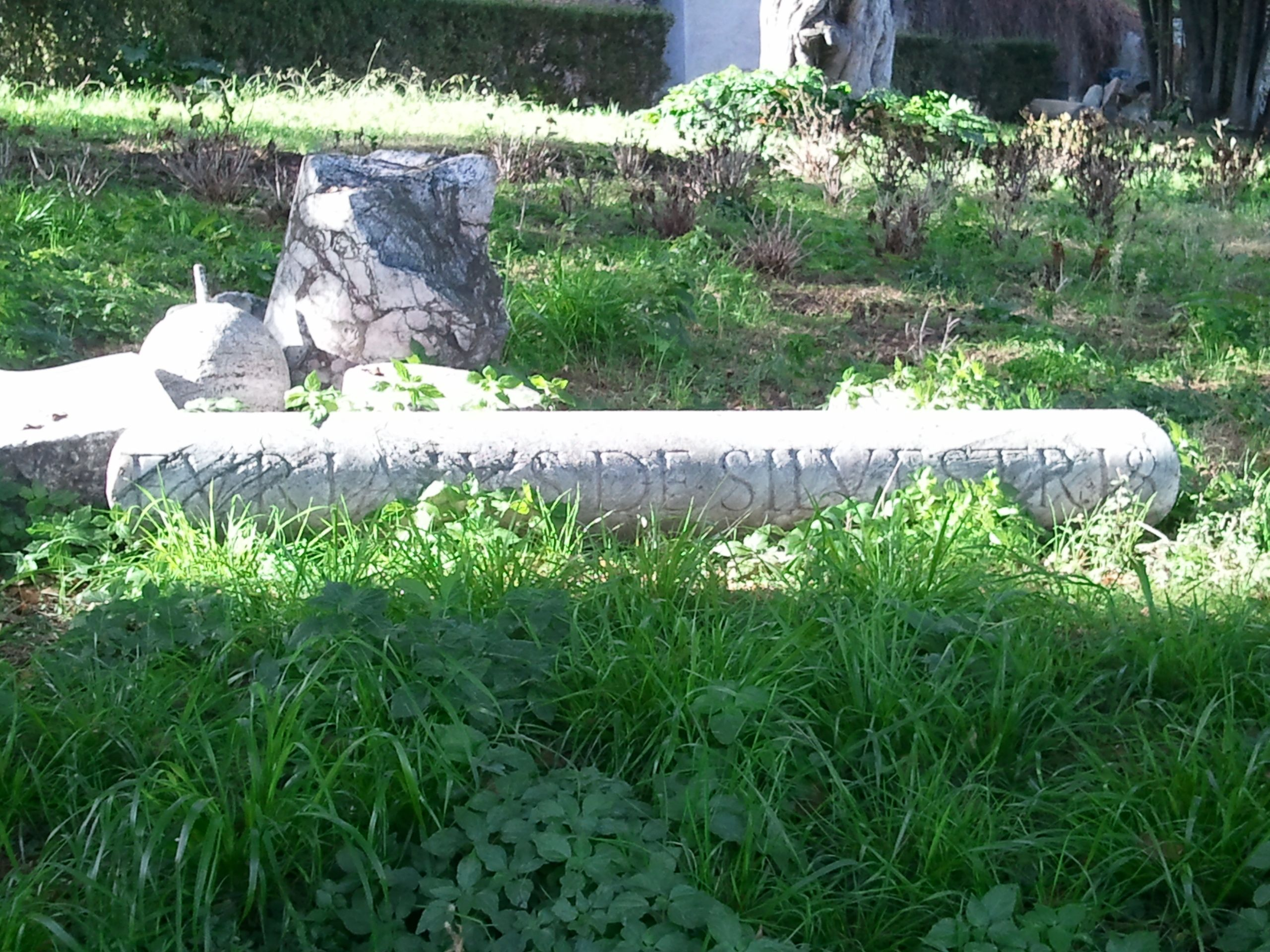 The time of the Roman Empire can be felt also from the pillar which rolled.   /公園に転がってる柱からも歴史を感じられる @Roma