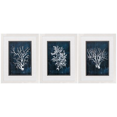 Breakwater Bay Wood Coral 3 Piece Framed Graphic Art Set In Blue
