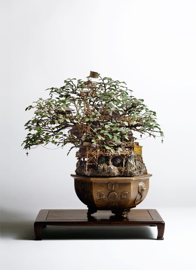 artist transforms bonsai trees and empty cans into