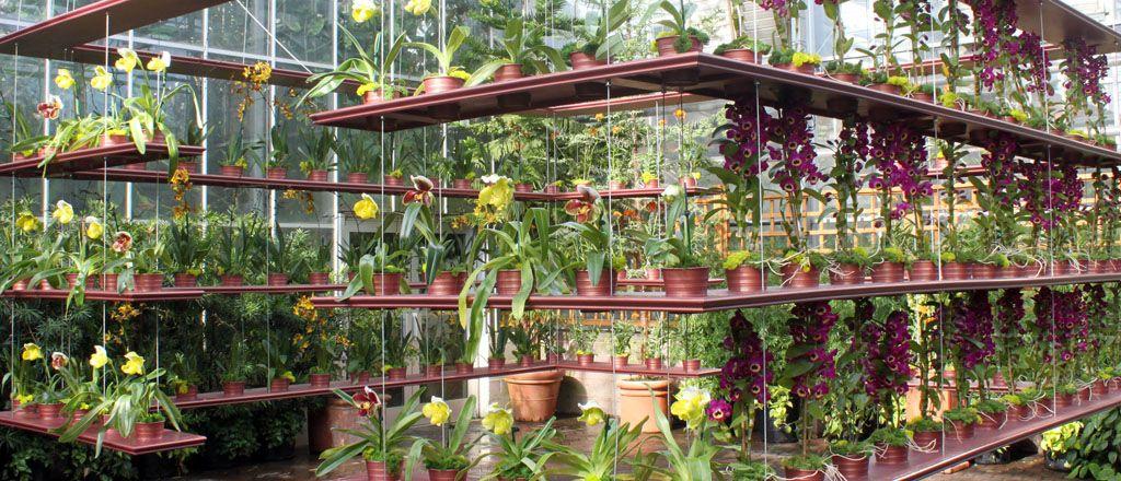 Botanic Garden Design   Google Search