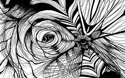 Spinning Webs Abstract Black And White Psychedelic Nature