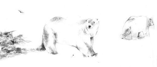 Twitter : @RheaAnastasia  Rhea Anastasia pencil, handmade, black and white, sketch, polar bear