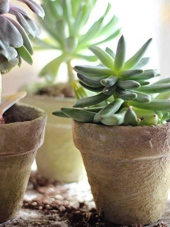 10 Upscale Ways To Make Over Terra Cotta Pots Terracotta Pots Diy Terra Cotta Pots Antique Terra Cotta Pots