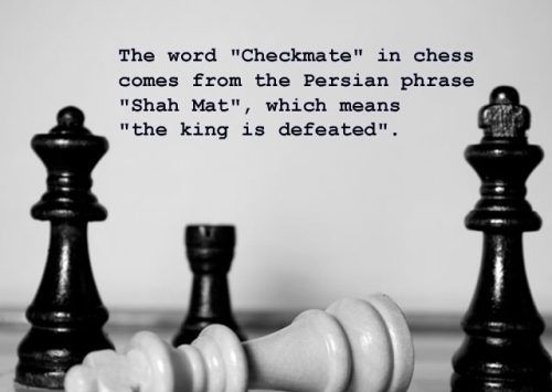 And it looks like the Black Queen got him. | Chess, Chess ...
