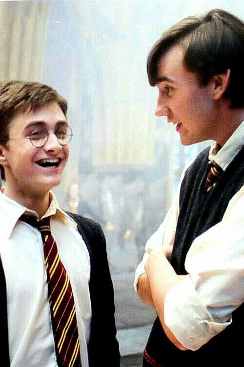 Neville And Harry Harry Potter Film Phantastische Tierwesen Schauspieler