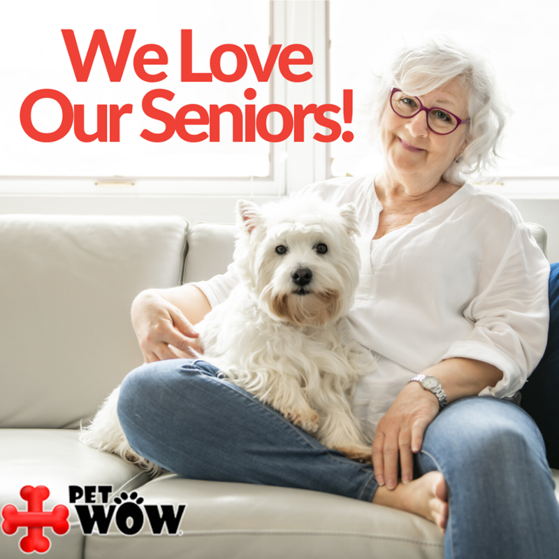 Easier Pet Care In 2020 Senior Citizen Pet Care Pets