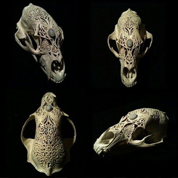 Bear bone lace gorgeous gothic skull and carvings