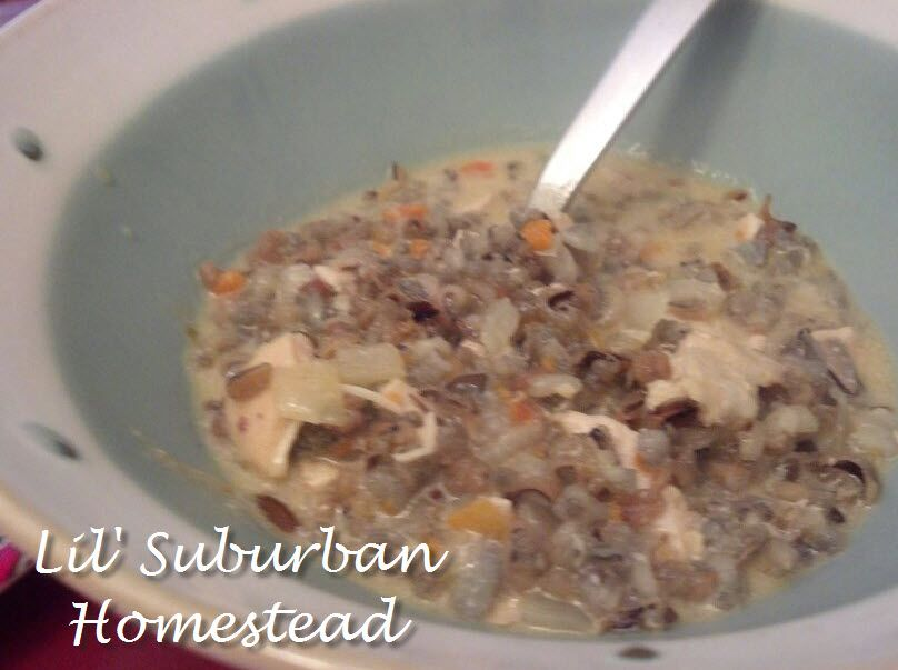 Wild rice and chicken soup with Panini