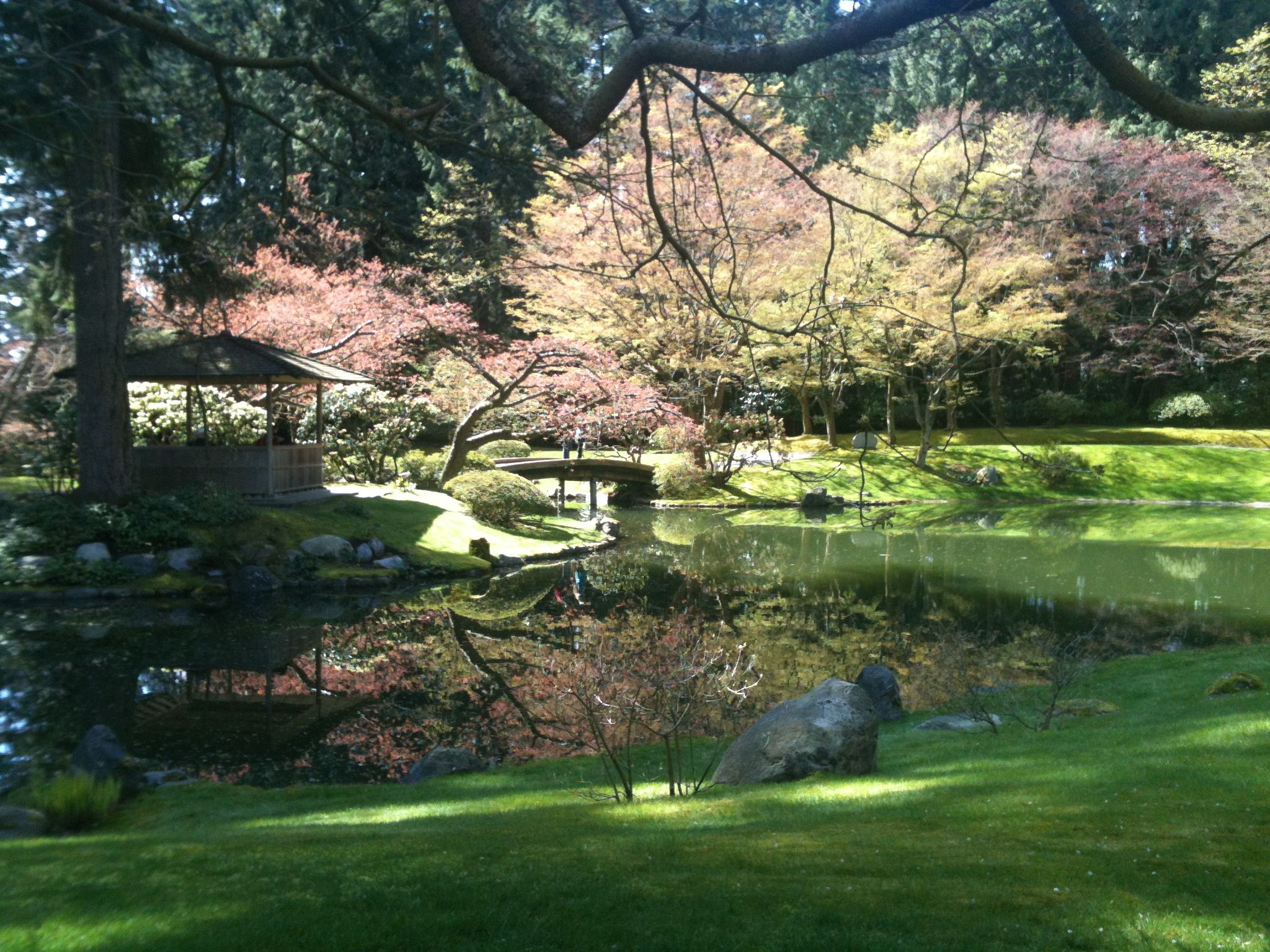 Japanese garden _ Nitobe memorial garden in UBC, Vancouver