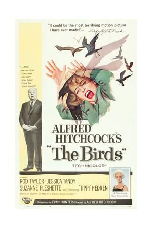 THE BIRDS, from left, Alfred Hitchcock, Jessica Tandy (illustration), Tippi Hedren, 1963 Art Print at Art.co.uk
