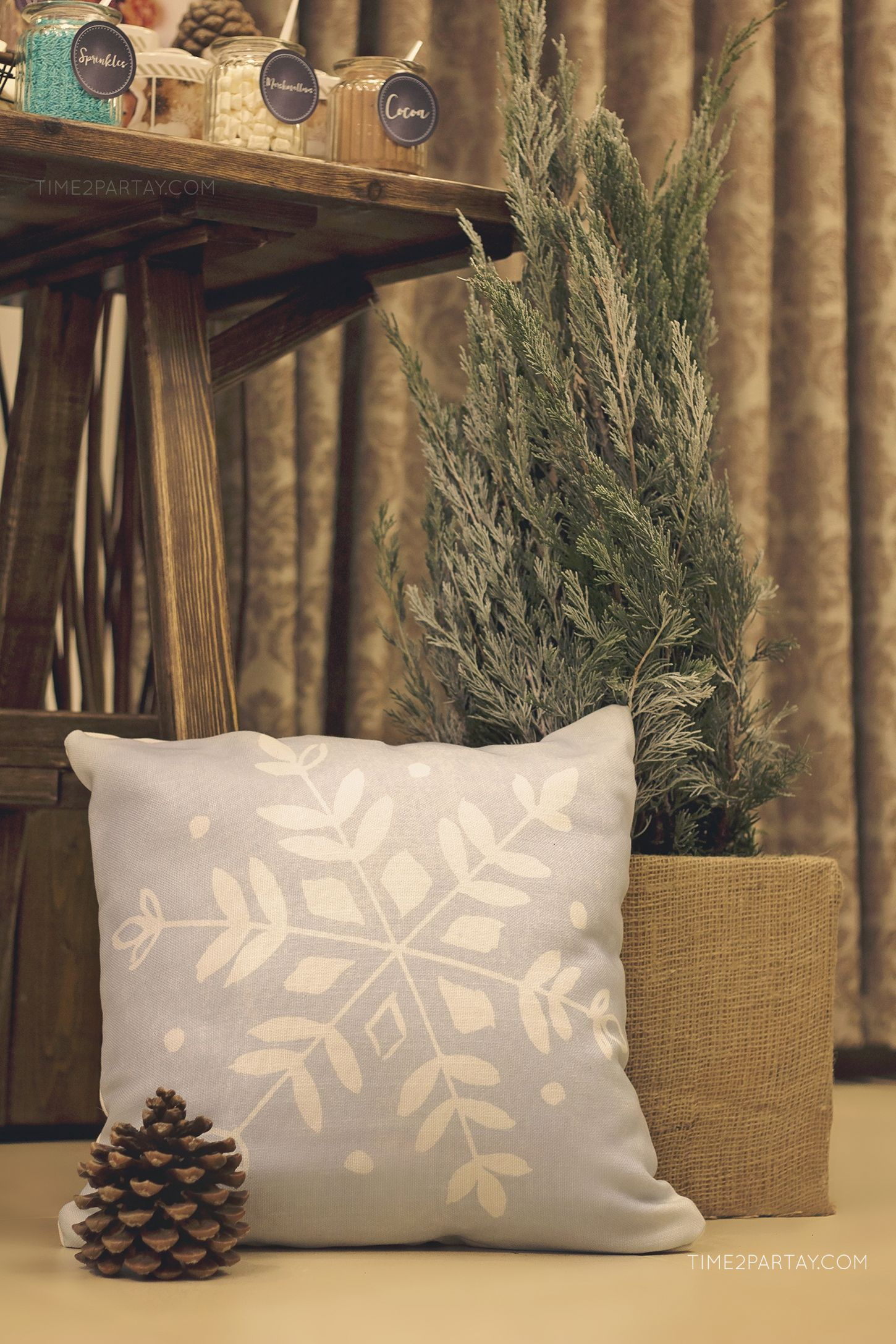 A Rustic Winter Welcome Baby Party