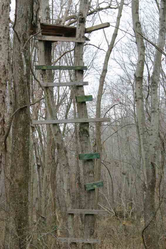 Dilapidated wooden tree stand tree stand safety remember for Deer ground blind plans