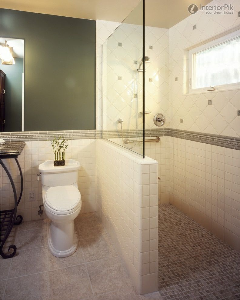 bathroom renovations for elderly | Small bathroom shower design ...