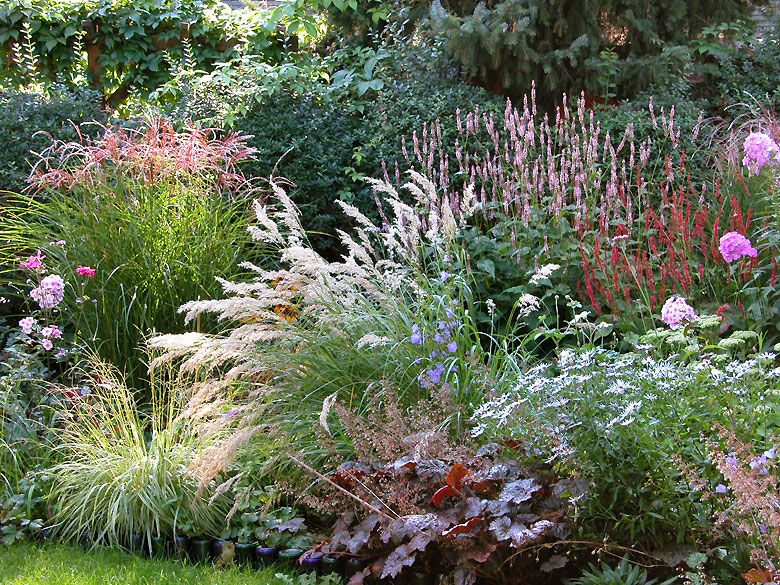 Make a list of trees plants and seasonal plants to buy for Garden deciduous trees