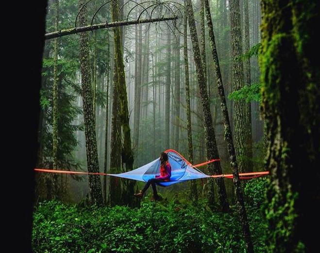 텐트사일만큼 자연과 어울리는 텐트가 있을까요. 자연 속에 함께 스며들어 싱그러운 숲내음을 느끼는 캠핑. 트리텐트 텐트사일과 함께 경험해보세요.  http://www.tentsile.co.kr  #tentsile #magforcekorea #tent #camp #camping #treetent #outdoor #travel #텐트사일 #맥포스코리아 #텐트 #캠프 #캠핑 #트리텐트 #아웃도어 #여행