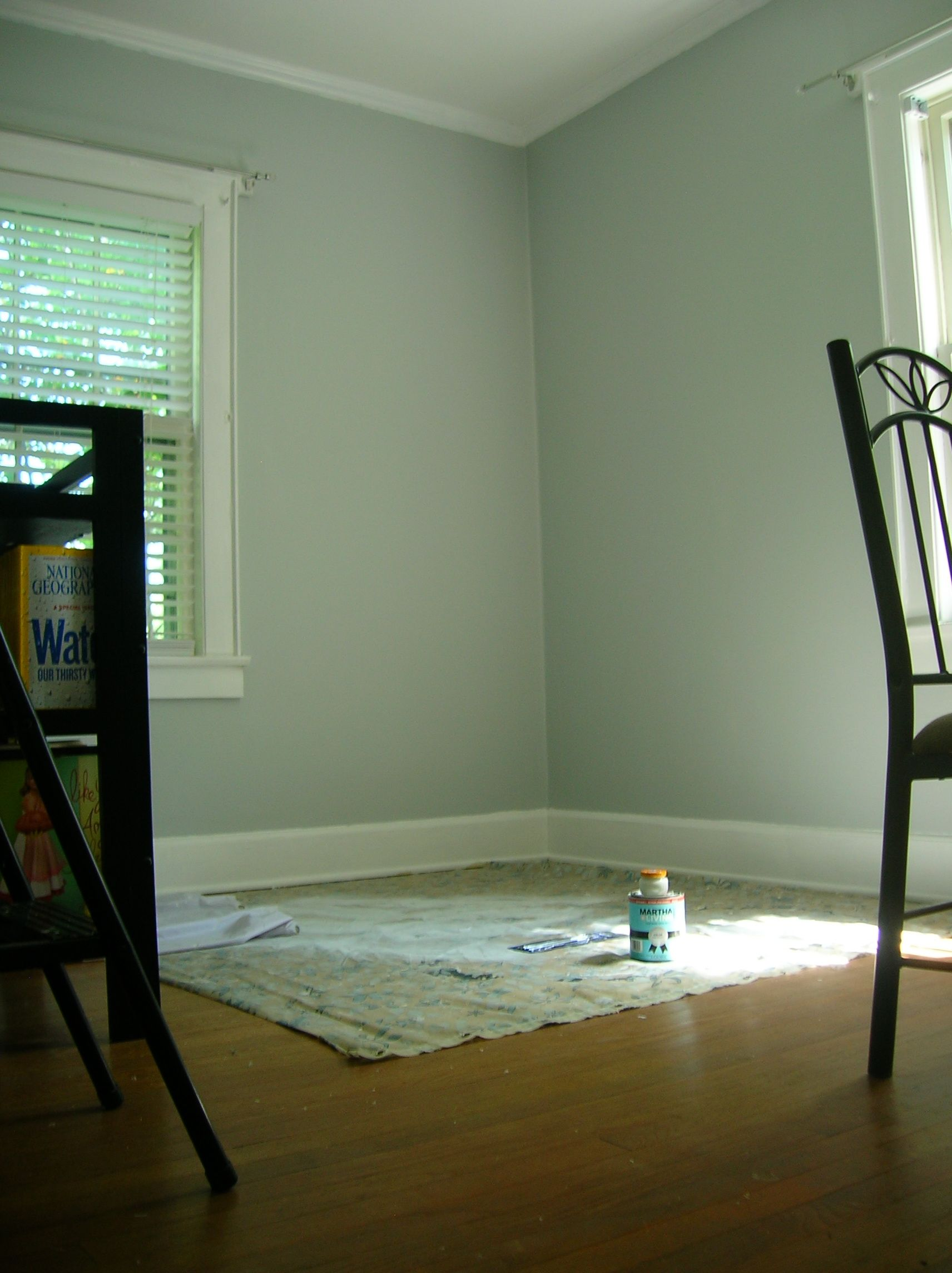 martha heavy goose down color-kitchen walls? | house paint colors