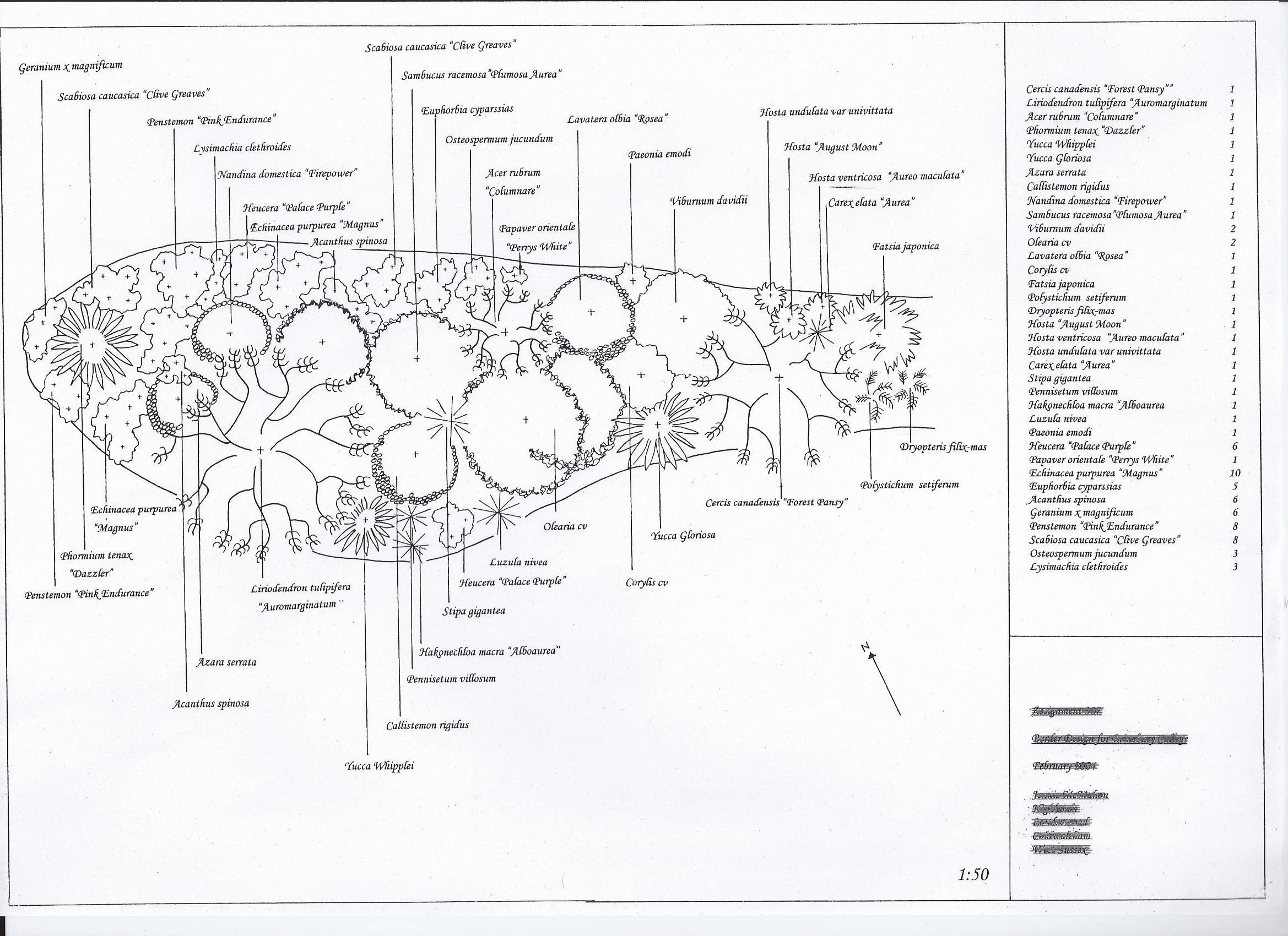 For a mixed border with shrubs a small tree and herbacious for Flower garden layout examples