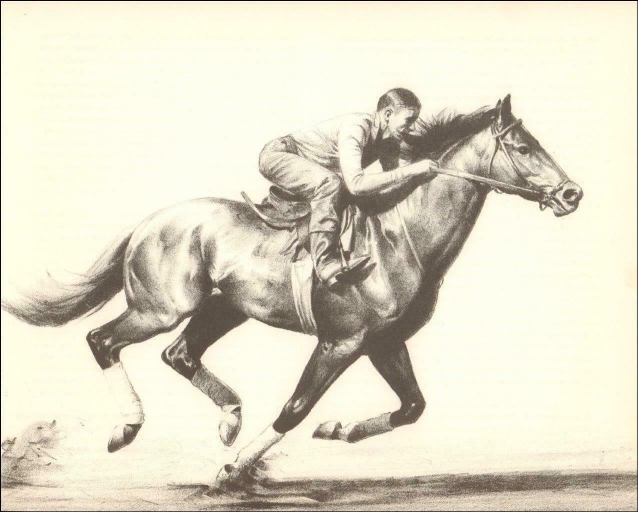 Citation Race Horse Triple Crown Winner By C W Anderson Vintage 1952 Ebay Horses Triple Crown Winners Horse Artwork
