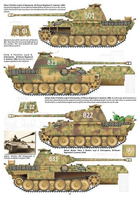 Panther Variants in Color