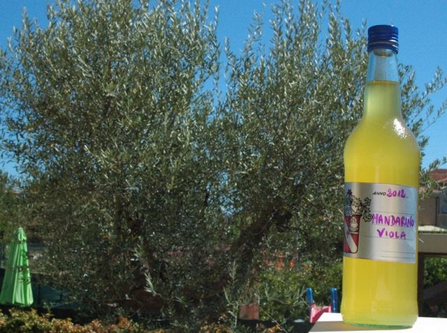 Liquore Mandarinetto – Vegan blog – Ricette Vegan – Vegane – Cruelty Free