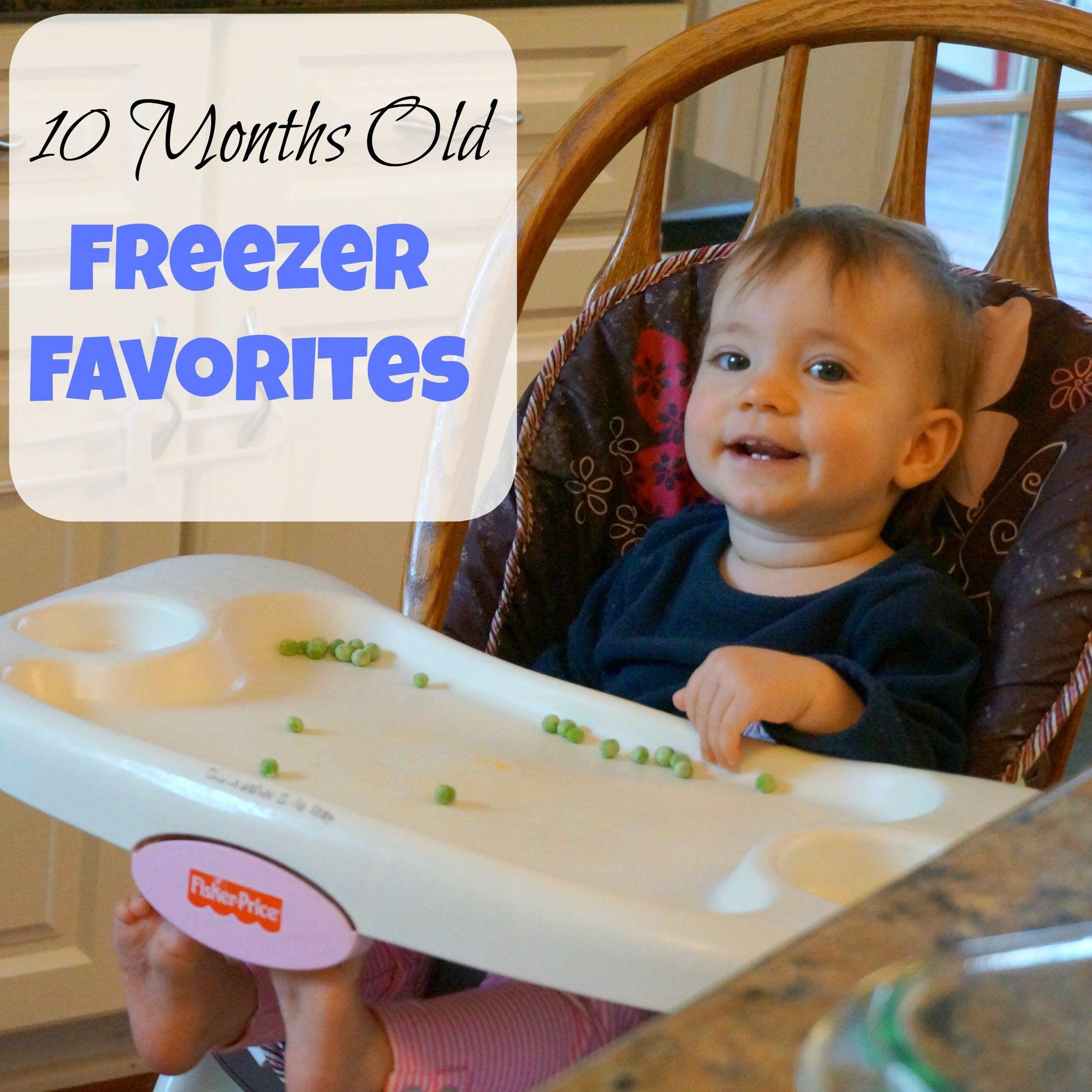 10 Months Old: Freezer Food Favorites
