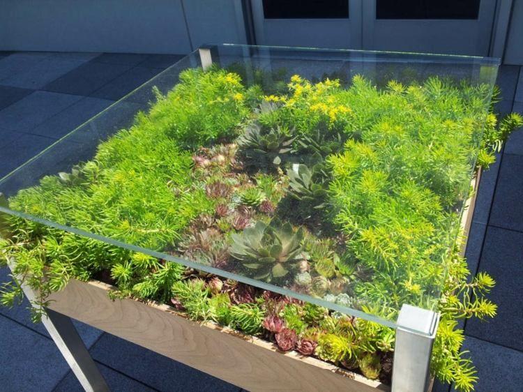 Diy déco avec des plantes succulentes en 80 photos Apartment ideas Sukkulenten, Deko  ~ 23110941_Sukkulenten Im Glas Dekorieren