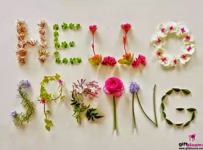 عيد نوروز مبارك وكل عام وأنتم بألف خير Hello Spring Spring Flowers Spring Inspiration