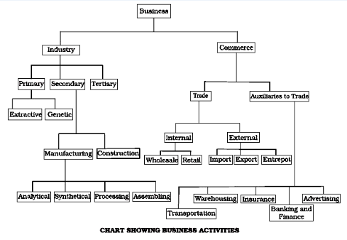 Draw A Chart Showing The Classification Of Business Activities In 2020 Activities Business Studies Chart
