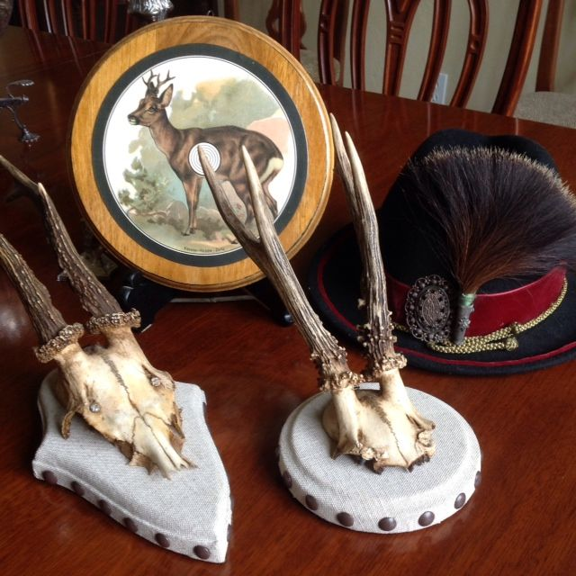 Non Traditional Roe By Heritage Game Mounts