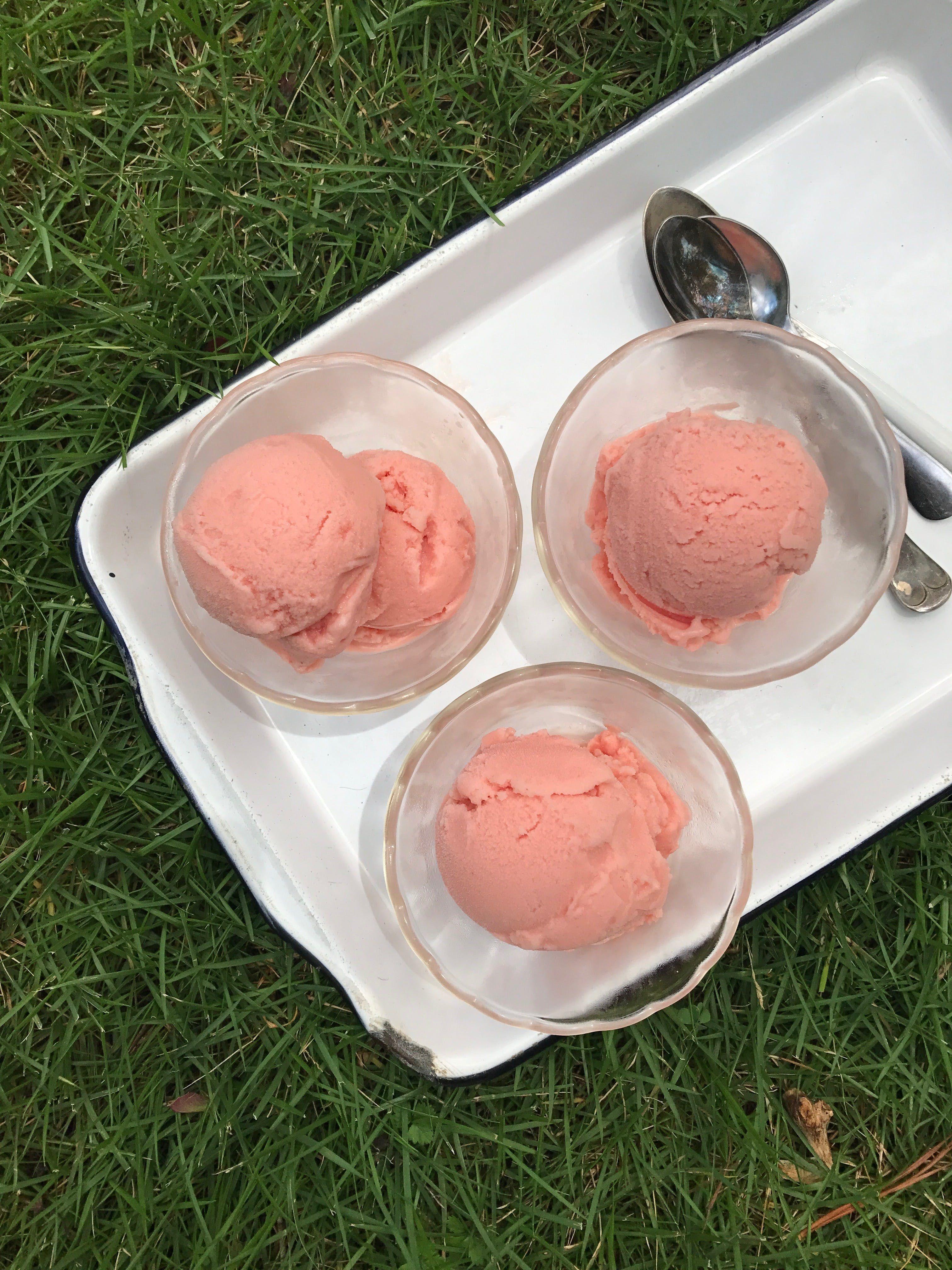 2-Ingredient Watermelon Sherbet
