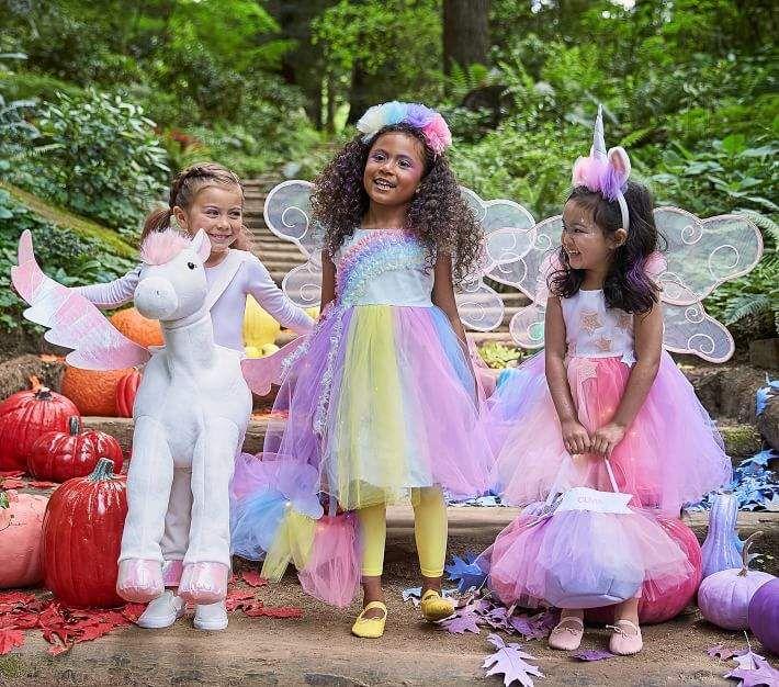 Pottery Barn Kids Toddler Light Up Rainbow Fairy Costume