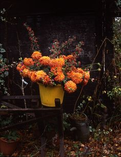 Autumn Wedding on Pinterest | Bouquets, Fall Wedding Flowers and ...