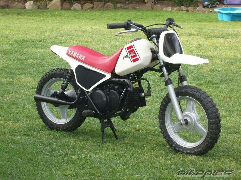 1985 Yamaha Pw50 | bikes I've had and own | Motorcycle