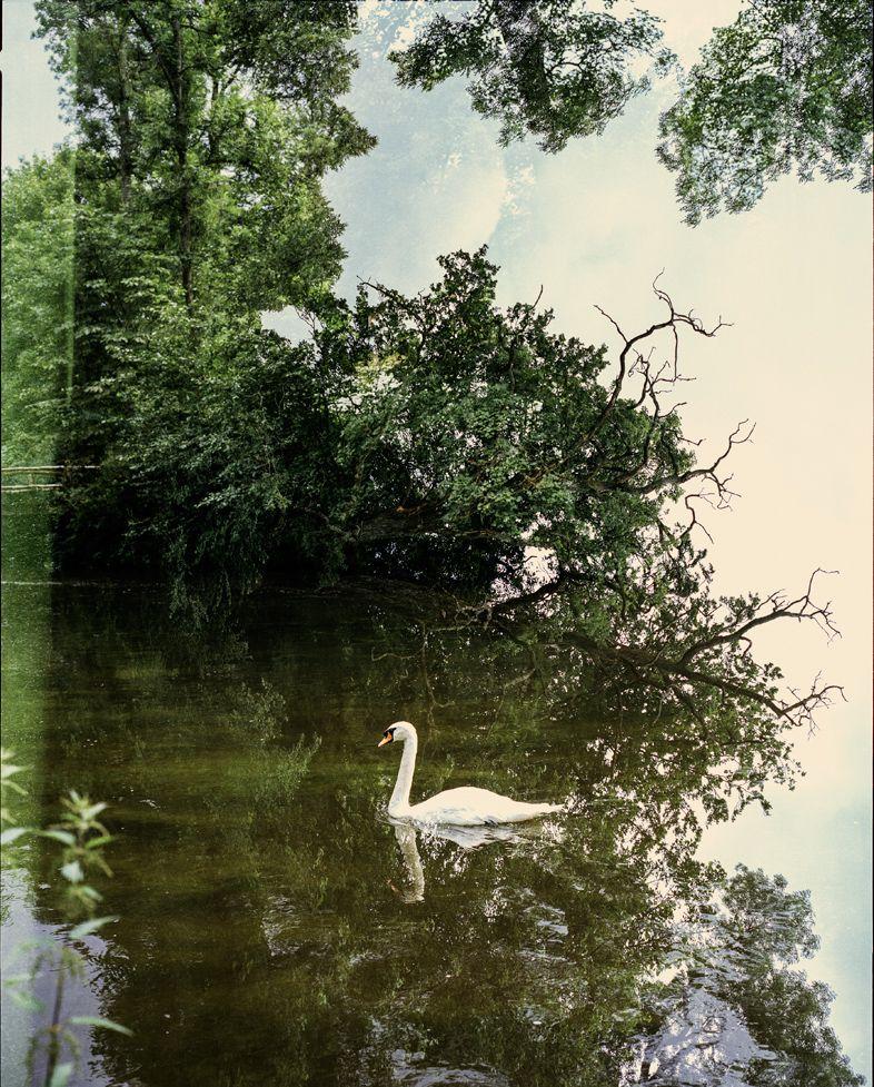 8 fotógrafas recorren el Danubio inspirada por el mítico viaje de Inge Morath en los años 50