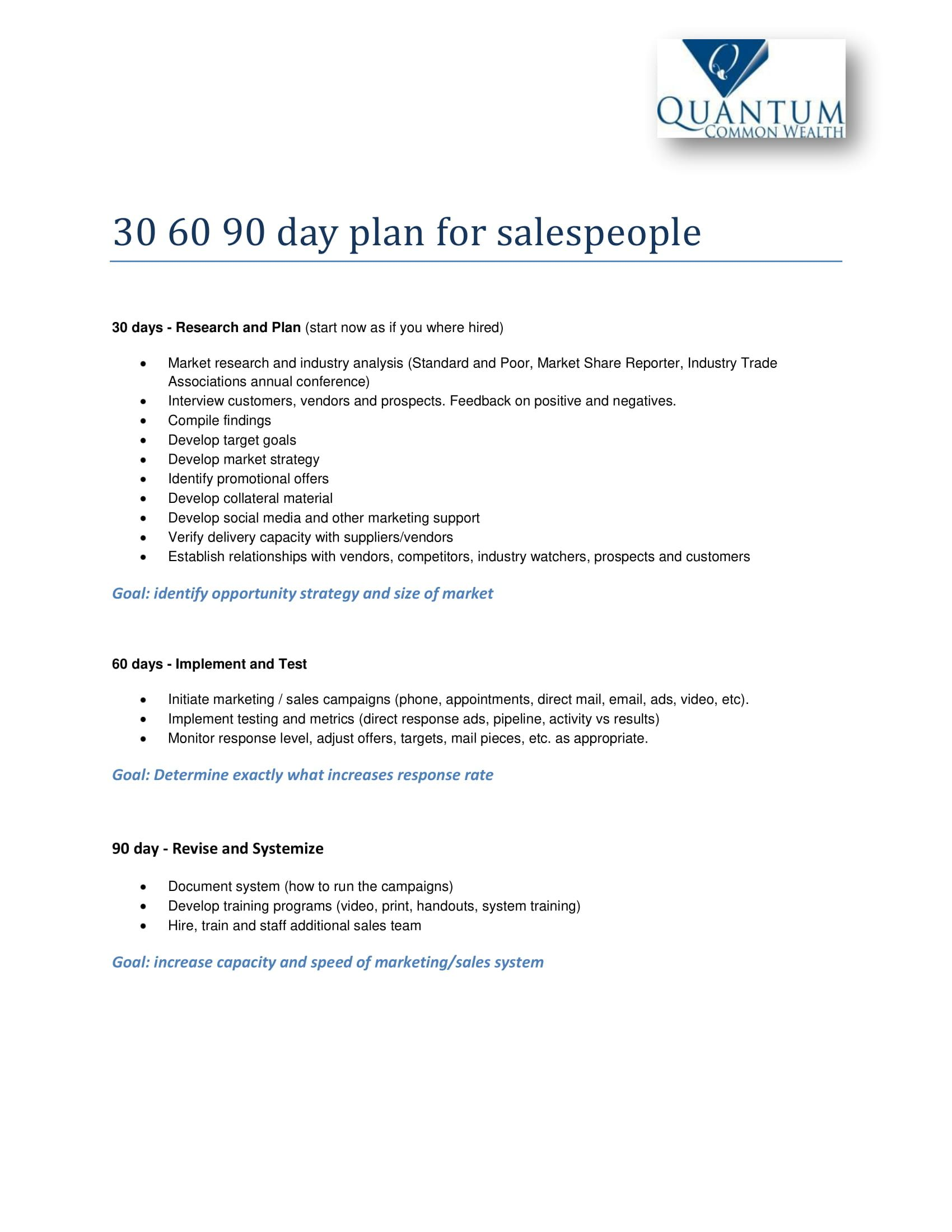 12+ 30 60 90 Day Sales Plan Examples 90 day plan