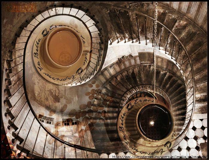 """""""Глазами лестниц"""". Milendia series """"Eye of ladders"""" Yin Yang tee and coffee"""
